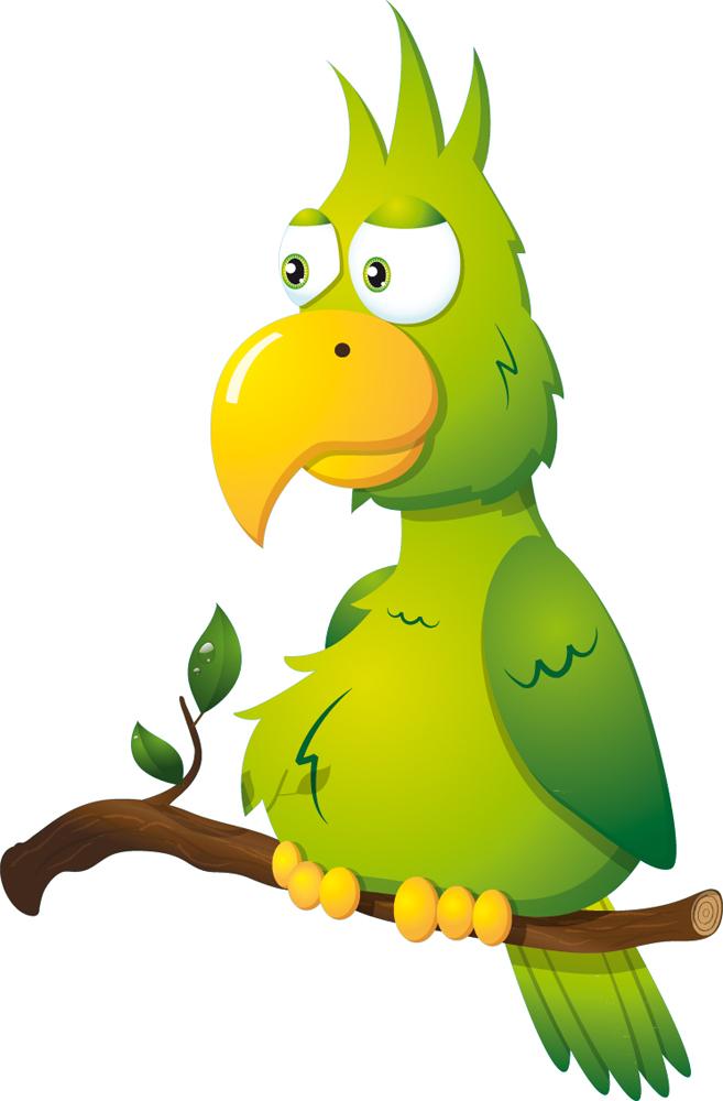 Прикольный попугай рисунок, открытки именинником для