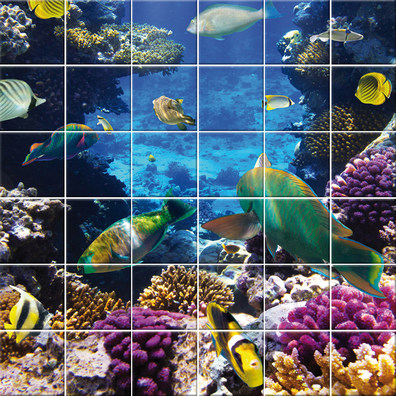 Wallstickers Folies Fish Tiles Wall Stickers