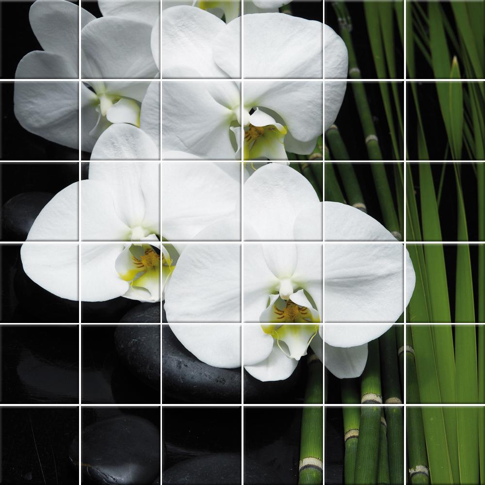 wallstickers folies flowers tiles wall stickers wallstickers folies poppy tiles wall stickers