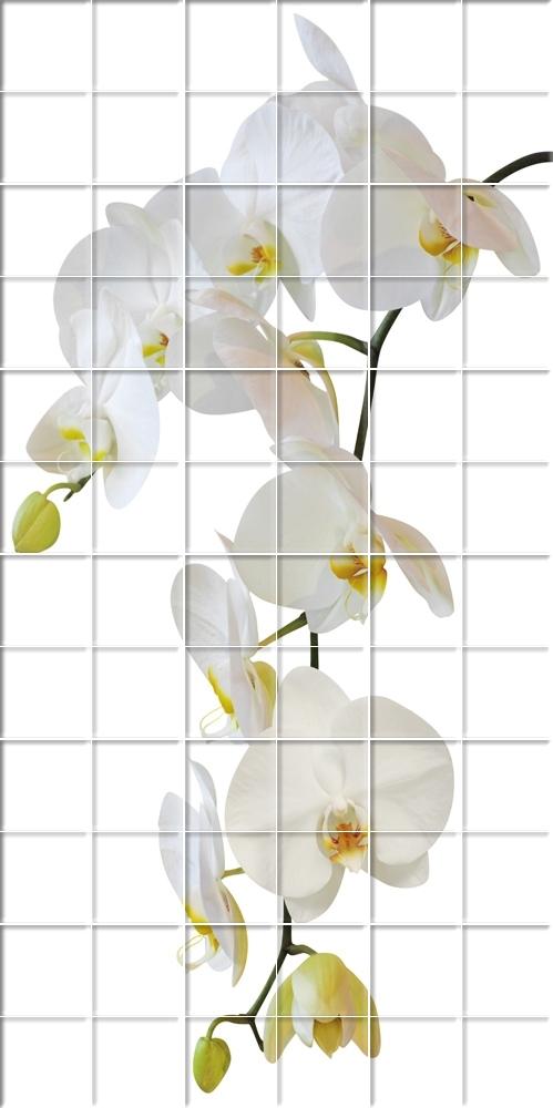Vinyl Printed Tiles Shower Wall