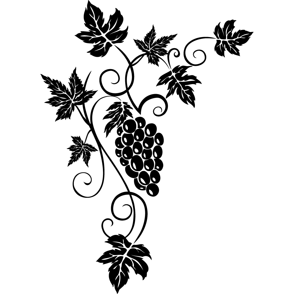 wallstickers folies grapes wall stickers Parts of a Grape grapes wall stickers