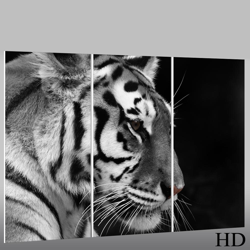 Tiger forex